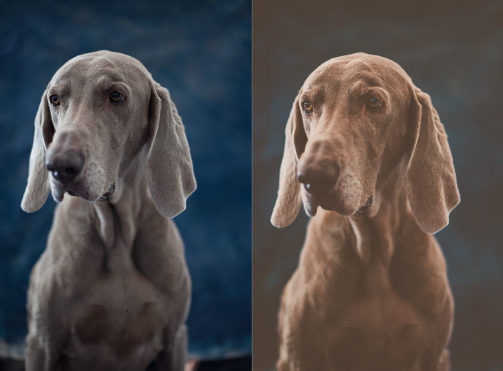 before and after sleek lens portrait preset review